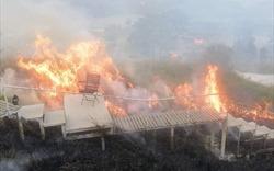 Từ vụ homestay Đà Lạt cháy lớn đến việc tuân thủ pháp lý trong kinh doanh homestay