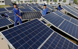 Bà Rịa – Vũng Tàu: Gần 1200 tỷ đồng xây dựng Nhà máy điện mặt trời Châu Pha