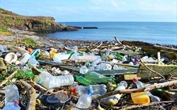 Châu Âu nỗ lực giảm thiểu rác thải nhựa
