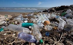 Rác thải nhựa là vấn nạn chính bởi ý thức người dùng!