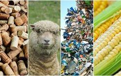 Bất ngờ với 7 vật liệu xây dựng xanh từ nguyên liệu thân thuộc