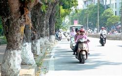 Dự báo thời tiết ngày 17/6/2019: Hà Nội ngày nắng nóng, chiều tối mưa dông