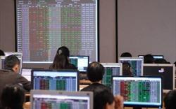 Nhóm cổ phiếu vốn hóa lớn phân hóa mạnh