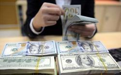 Nhà đầu tư nước ngoài có thể đổ bộ vào các ngân hàng Việt trong năm nay