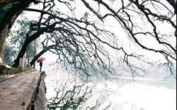Dự báo thời tiết ngày 24/12/2019: Hà Nội mưa phùn và sương mù