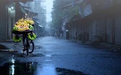 Dự báo thời tiết ngày 22/12/2019: Hà Nội mưa phùn, trời lạnh