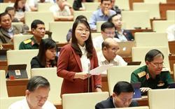 Cho ý kiến dự án Luật Dân quân tự vệ (sửa đổi) và Luật Xuất, nhập cảnh