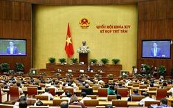 Kỳ họp thứ 8: Biểu quyết 1 nghị quyết, thảo luận 2 dự án Luật