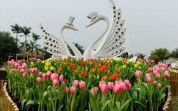 """Thưởng thức """"Bản giao hưởng mùa xuân"""" tại Ecopark"""