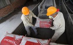 Xuất khẩu xi măng giảm mạnh trong quý I/2020 do ảnh hưởng dịch Covid-19