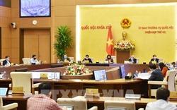 Sáng mai (20/4), Ủy ban Thường vụ Quốc hội cho ý kiến 6 dự án luật