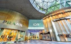 """Shop thương mại dịch vụ có thật sự là """"mỏ vàng"""" mới cho giới đầu tư bất động sản?"""