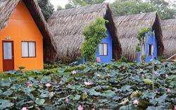Vĩnh Long: Làng du lịch sinh thái Hoàng Hảo mở cửa đón du khách