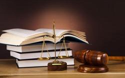 Kỳ 5: Cần phân tích sâu sắc lời tuyên của Tòa phúc thẩm