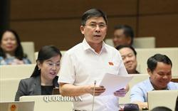 Đại biểu đề nghị khẩn trương nghiên cứu sửa đổi Luật Đất đai