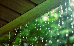 Cơn mưa đầu mùa