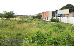 Bán đấu giá các khu đất trong Khu đô thị mới Nam TP.HCM