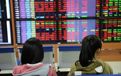 Tuần đen tối chứng khoán Việt: Cổ phiếu bất động sản lao dốc theo xu thế chung