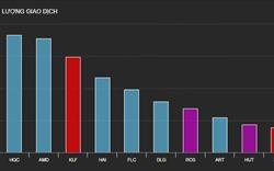 """Cổ phiếu bất động sản tiếp tục lao dốc, HQC và AMD """"nổ"""" thanh khoản"""