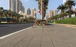 Gạch lát xuyên nước CLC Khang Minh: Giải pháp thông minh cho đô thị hiện đại