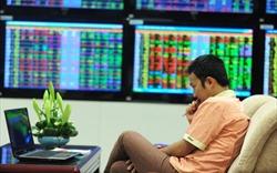 """Nhà đầu tư trong nước ồ ạt mở tài khoản """"bắt đáy"""" thị trường trong tháng Ba"""