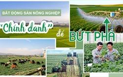 """Bất động sản nông nghiệp: Cần sự """"chính danh"""" để bứt phá"""