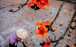 Rác cũng là hoa