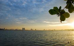 Đầm hồ Hà Nội