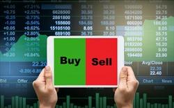 Thị trường chứng khoán tiếp tục rung lắc, nhiều mã bất động sản vẫn tăng trần
