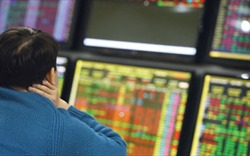 VN-Index giảm gần 10 điểm, VN30 chỉ có duy nhất HPG tăng giá