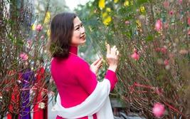Hà thành - Tưng bừng hoa Tết