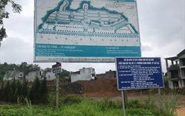 Vì sao Phó Thủ tướng yêu cầu tỉnh Lào Cai kiểm tra dự án rộng 38ha của KOSY?
