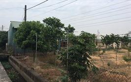 Bao giờ vi phạm đất đai ở xã Quất Động được xử lý dứt điểm?