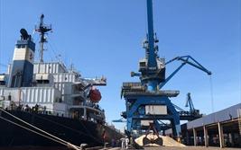 Thép Hòa Phát Dung Quất ký kết hợp đồng với đối tác Hàn Quốc phân phối Xỉ hạt lò cao nghiền mịn - S95 tại khu vực phía Nam