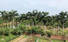 Thành phố Thái Bình: 45 hộ dân ròng rã hơn 10 năm đi đòi đất