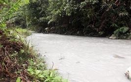 Con suối chảy qua khu vực mỏ vàng Pác Lạng chuyển màu trắng đục bất thường