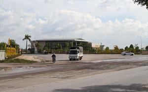 Trâu đằm, vịt bơi tại dự án tỷ đô Long Hưng City