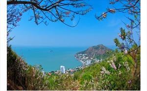 Vung Tau aims to become a clean, green tourist destination
