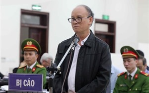 Ex-Danang leaders slapped long jail terms for illegal land transfers