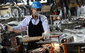 New policies urged to remove roadblocks in privatizing Vietnam's SOEs