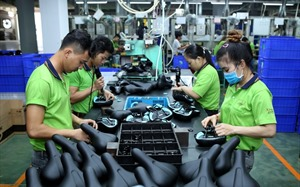Vietnam to select quality foreign investment