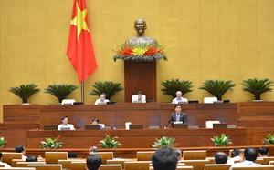 Quốc hội xem xét việc thí điểm mô hình chính quyền đô thị tại Đà Nẵng