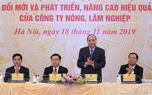 Thủ tướng: Đất đai cần được giao cho chủ thể trực tiếp quản lý