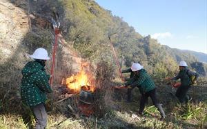 Vườn quốc gia Hoàng Liên phối hợp Sun World Fansipan Legend diễn tập PCCC rừng