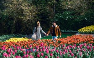 Sun World - Thiên đường cho các cặp đôi trong mùa yêu thương