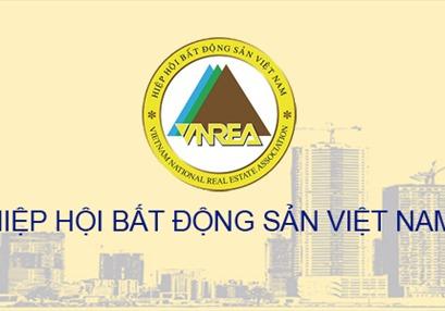 Điều lệ sửa đổi, bổ sung Hiệp hội Bất động sản Việt Nam