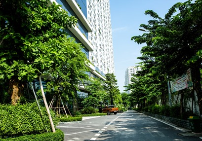 Chạm tới yên bình nơi tòa nhà xanh giữa Thủ đô